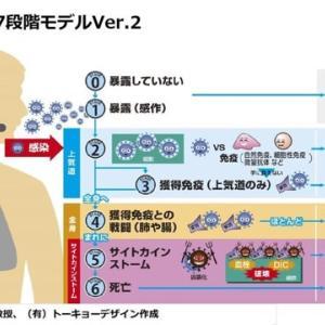 【新型コロナ】高橋泰教授「98%は風邪、血管が弱いと要注意」