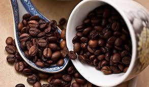 コーヒースペシャリスト資格取得