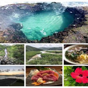 奄美大島のベストシーズン 旅行に行くならこの時期に!!