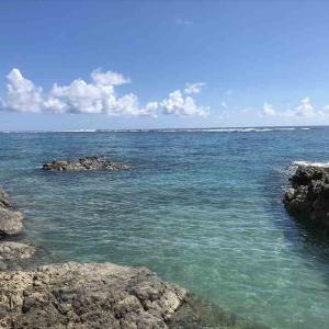 奄美大島でダイビングひとり旅
