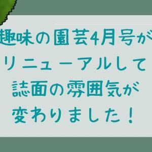【リニューアル】趣味の園芸4月号でハーブ栽培始めてみる?