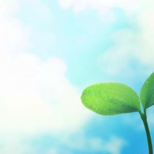 挑戦や成長を見守りたくなる心理