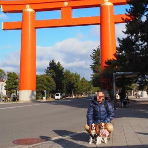 ワンコと淡路島ー徳島ー香川ー京都の旅!<2020.1.4 その1>