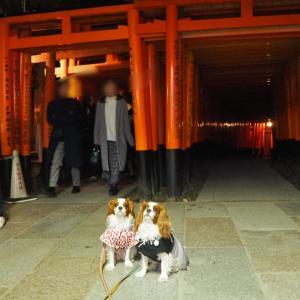 ワンコと淡路島ー徳島ー香川ー京都の旅!<2020.1.3 夜>
