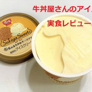 牛丼屋のアイス!?すき家でアイスが売っていたから食べてみた!