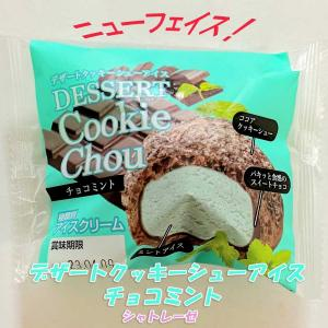 【ニューフェイス】シャトレーゼから新たなチョコミントアイスが登場していたので食べてみた!