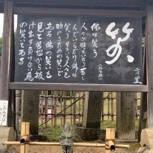☆10‼️昨年の今日は、川井聖子としてのお仕事納め☆