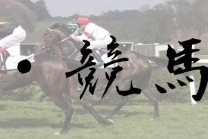 【2019年】ダイワメジャー産駒の成績