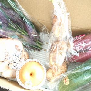 JA金沢市 Instagram野菜の日キャンペーン当選…♪