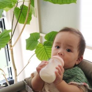 赤ちゃんの離乳食が始まった!ミルクはいつまで飲ませたらいい?