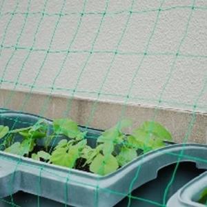 家庭菜園での虫除けネットはプランターでの野菜作りの必需品!?