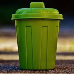 生ゴミの入ったゴミ箱に虫が!どう処理すればいいの?