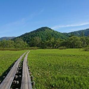 【ゆるふわ登山】関東近郊でハイキングにも旅行にも楽しめるゆるふわ登山できる山5選。