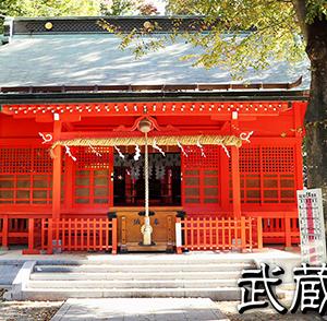 【武蔵国一之宮】小野神社と瀬織津姫