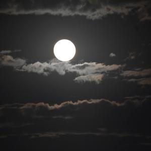2021中秋の満月