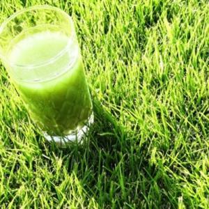 大麦若葉青汁の栄養成分★ゴクゴク飲めて抗酸化作用で老化防止に