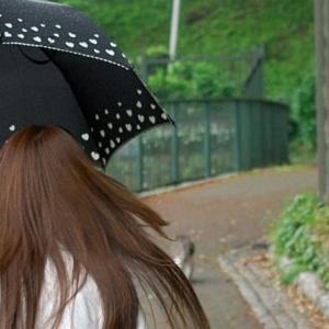 雨の日でも髪型を長くキープする方法!!おすすめのヘアアイロンも紹介!!