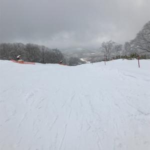 かなりいい新雪☃️