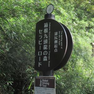続・箱根(大桶谷&芦ノ湖)を走ってきたよ。
