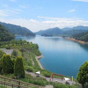 お昼まで、水溜まりを2湖走ってきたよ。