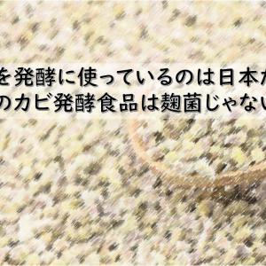 麹菌を発酵に使っているのは日本だけ?外国のカビ発酵食品は麹菌じゃないの?