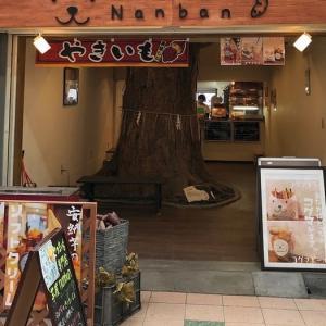 岡町・原田神社の御神木