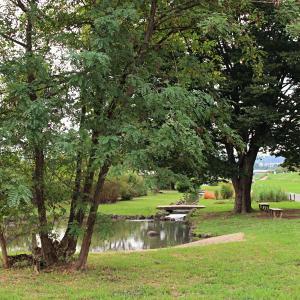 福生市の多摩川中央公園