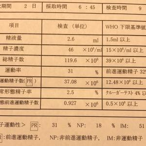 不妊治療〜夫の検査結果を公開!〜