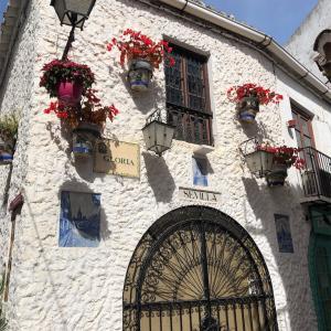 スペイン ツアーバスで行く、白い村〜マルベージャ 後編