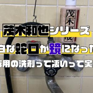 歓喜!!実家の浴室の水垢、皮脂汚れはこいつにお任せ!!