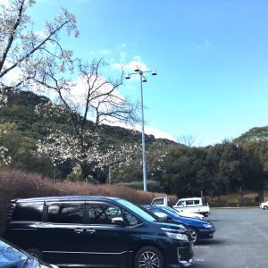 神園山へ!