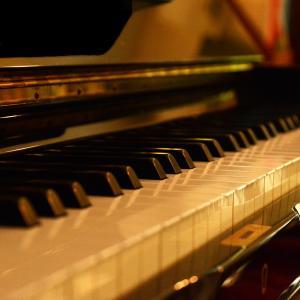 【ピアニストのハラミちゃんから学ぶこと