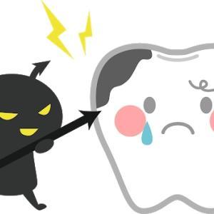 歯磨きしてないけど猫は虫歯になる?|毎日磨くのは無理な気が…