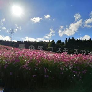 富山の秋を見に行く