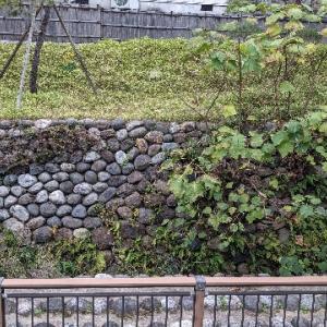 東内惣構跡枯木橋詰遺構。