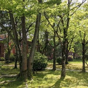 石川四高記念文化交流館 前庭。