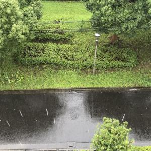今は天気が気になる。晴耕雨読生活。雨ニモマケズ。