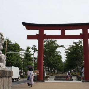 【鎌倉まなぶ】鶴岡八幡宮の参道は800年の時間を刻んでいる。