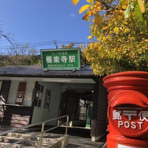 【鎌倉いいね】11月22日現在の鎌倉紅葉状況