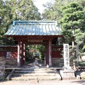 【Youtube更新】鎌倉殿の13人で小池栄子演じるの北条政子、を動画でお届け(壽福寺)。