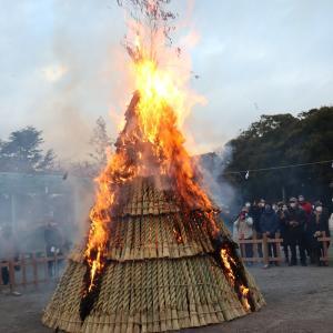 【鎌倉いいね】鎌倉殿の八幡様のどんど焼き(左義長神事)