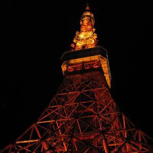 【アラ還さんぽ】東京はこんなに美しいのに。