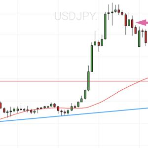 ドル円は利益確定💕