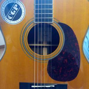 TOP板の種類と音の関係|アコギの音色を決めるシトカ・スプルース(Sitka Spruce)とウエスタン・レッド・シダー (Western Red Cedar)