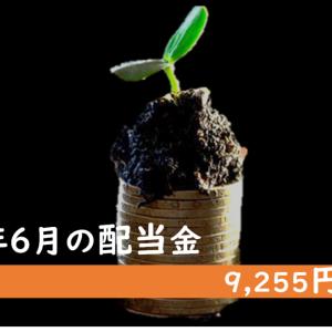 【2020年6月配当金】株価低迷の中、9,255円の配当金を受け取りました