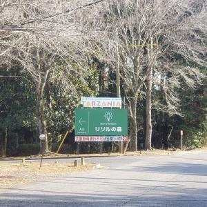 千葉 リソルの森②リゾートの中のキャンプ場