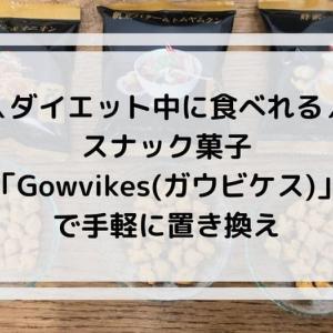 『Gowvikes(ガウビケス)』はダイエット中に手軽に置き換えできる