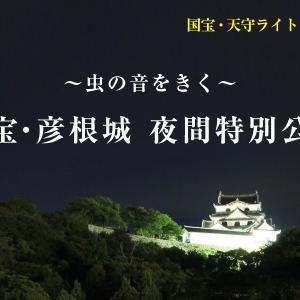 「~虫の音を聞く~」国宝・彦根城の夜間特別公開が行われます!9月19日から計6日間