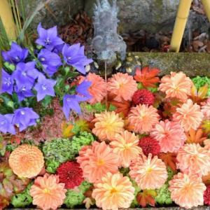 9/14~12/6まで『日吉大社 秋の花手水』が開催。昨年の様子もご紹介! / 大津市