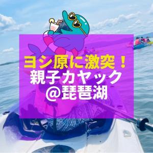 【ヨシ原に激突!親子カヤック@琵琶湖】